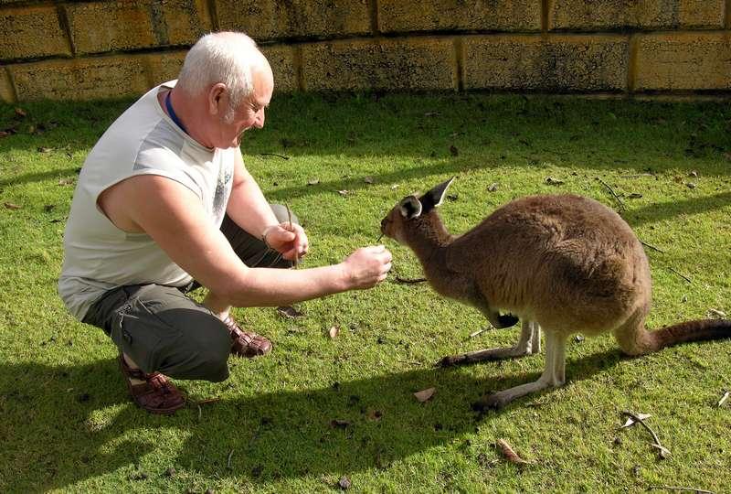 2008 Australija 188