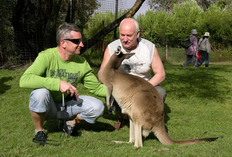 2008 Australija 191